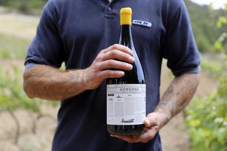 italy-prison-vineyard